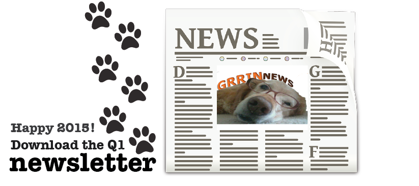 Newsletter Newspaper Slider 2015 Q1
