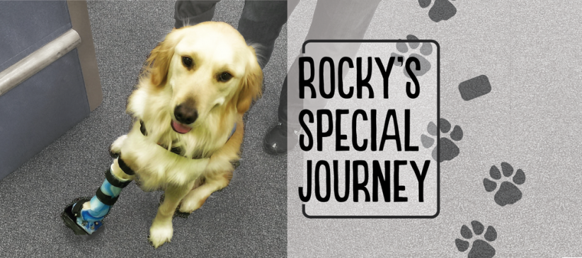 Rocky-14-24-Story—Slider – web optimized