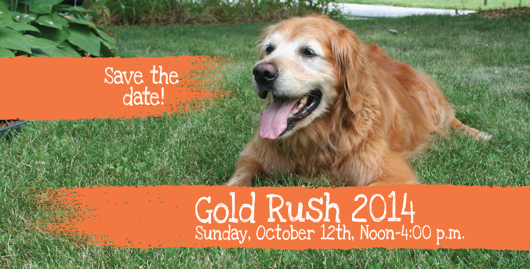 Gold Rush 2014 – Save the Date – Slider 9