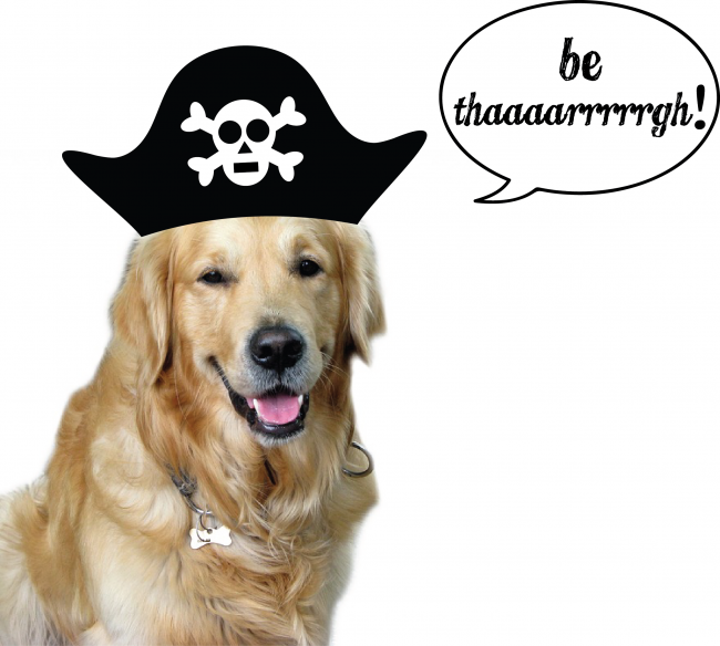 Pirate Dog word bubble