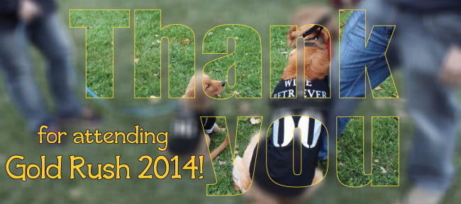 Gold Rush 2014 Thank You Page Header Graphic