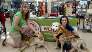 Meet and greet - Lincoln Petco 08 2015