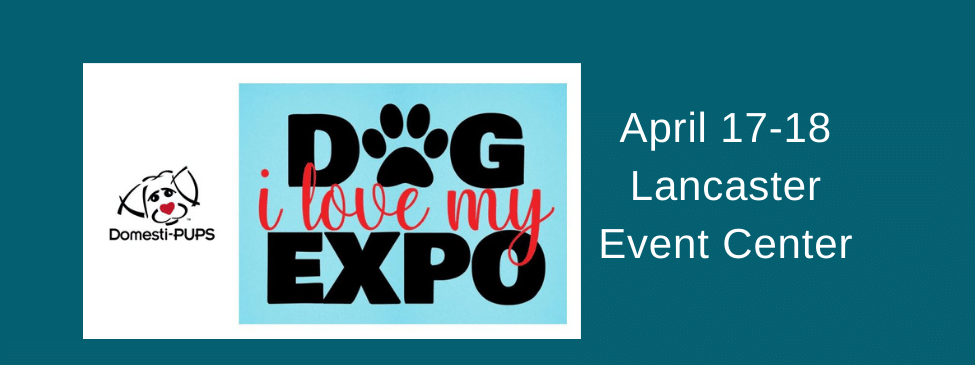 i love my dog expo slider 2021